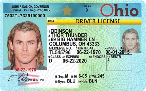 ohio  drivers license id viking