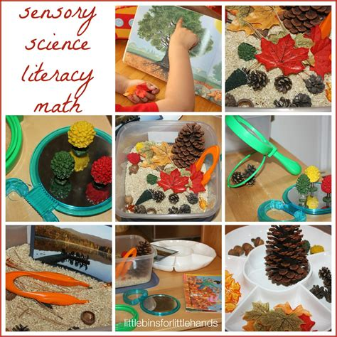 fall activity discovery table preschool fall sensory play 664 | fall activity discovery table exploring and learning activities