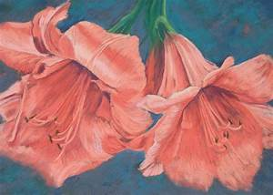 marion 39 s floral amaryllis in soft pastels