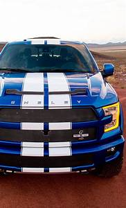 Ford F150 Shelby : 2016 shelby f150 carmania pinterest pinterest marketing marketing and hot cars ~ Maxctalentgroup.com Avis de Voitures