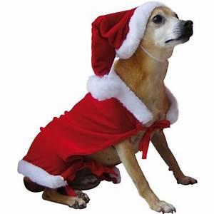 Video Pour Chien : costume p re no l pour chien en velours achat vente d guisement panoplie cdiscount ~ Medecine-chirurgie-esthetiques.com Avis de Voitures