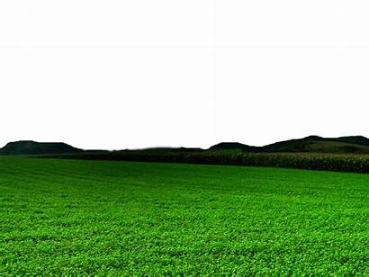 Nature Clipart Transparent Grass Format Icon Short