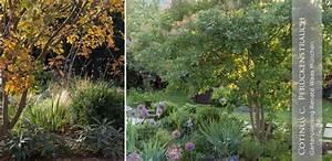 Gartengestaltung Für Kleine Gärten : gartenblog zu gartenplanung gartendesign und gartengestaltung gehoelze fuer den garten ~ Markanthonyermac.com Haus und Dekorationen