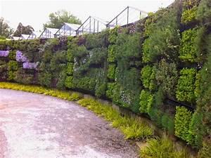 Mur Vegetal Exterieur : mur vegetal exterieur plantes sofag ~ Melissatoandfro.com Idées de Décoration