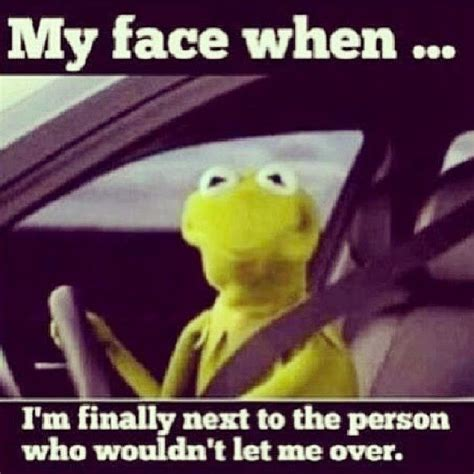 Kermit The Frog Meme Driving - having drive quotes quotesgram