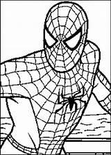 Spiderman Coloring Learn Enjoyable Stumble Tweet sketch template