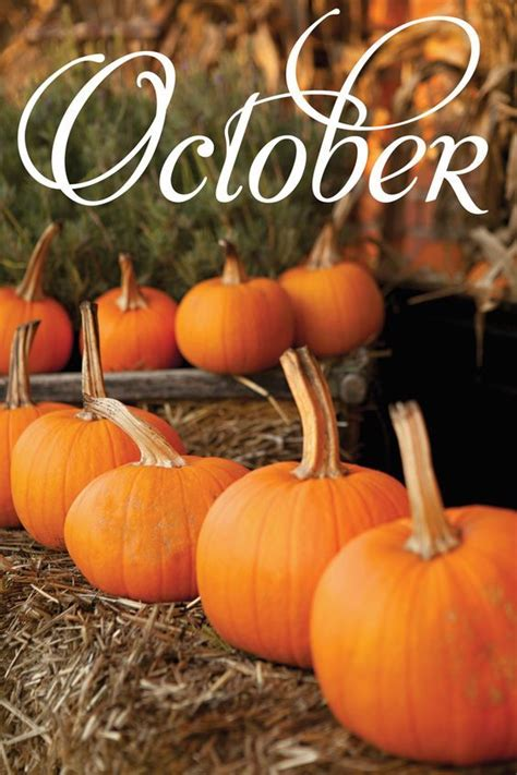 Fall Pumpkin October Image Pictures, Photos, and Images ...
