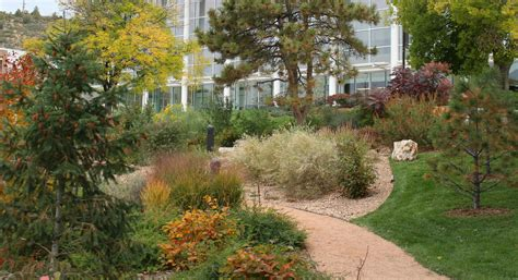 colorado landscaping garden ideas colorado interior design