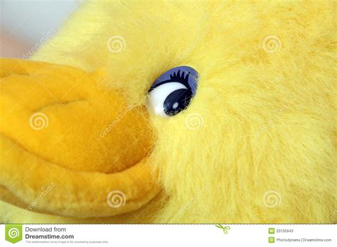 soft toy duck stock image image  pets soft yellow