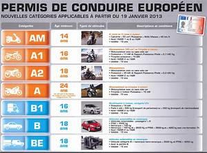 Tous Les Permis : mpsra expert en s curit routi re et coconduite permis de conduire 2013 tout savoir ~ Maxctalentgroup.com Avis de Voitures