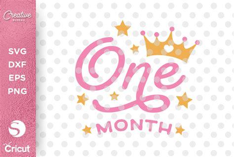 Baby floral milestone svg three baby does svg milestone mat marker svg unisex baby svg. One Month Old SVG, Baby Months Milestone SVG Cutting File