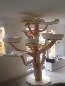 Arbre A Chat En Palette : maine coon world naturkratzb ume katze katzen kratzbaum katze und katzen haus ~ Melissatoandfro.com Idées de Décoration