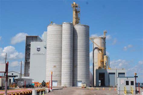 canadian miller unveils expansion plans  flour mill    baking business
