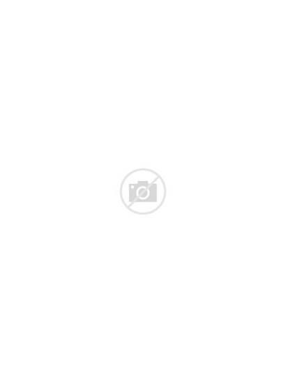 Brain Learning Clipart Gear Tree Albero Head