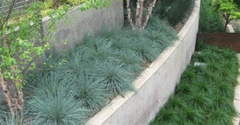 This Retaining Wall Uses Repetition Of Grass Plantings