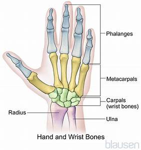 Overview Of Hand Disorders