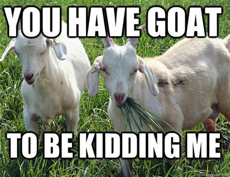 Billy Goat Meme - goats running amuck in richmond lead to really baaaaaad goat puns memes