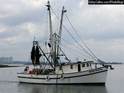 Shrimp Boat Forrest by Images For Shrimp Boats Loved Shrimp Boats Even Before