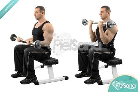Curl De Bíceps Con Barra Sentado