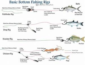 Rigs  Fishing Rigs And Kind Of On Pinterest