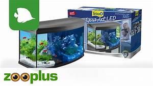 Aquarium Set Led : tetra aquaart evolution line led aquarium komplett set ~ Watch28wear.com Haus und Dekorationen