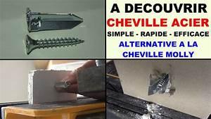 Poser Cheville Molly : cheville acier clouer sans per age une alternative la ~ Premium-room.com Idées de Décoration
