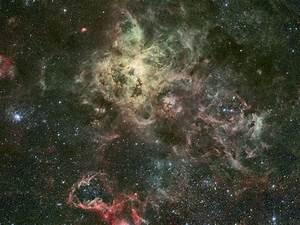 APOD: 2007 August 22 - Tentacles of the Tarantula Nebula