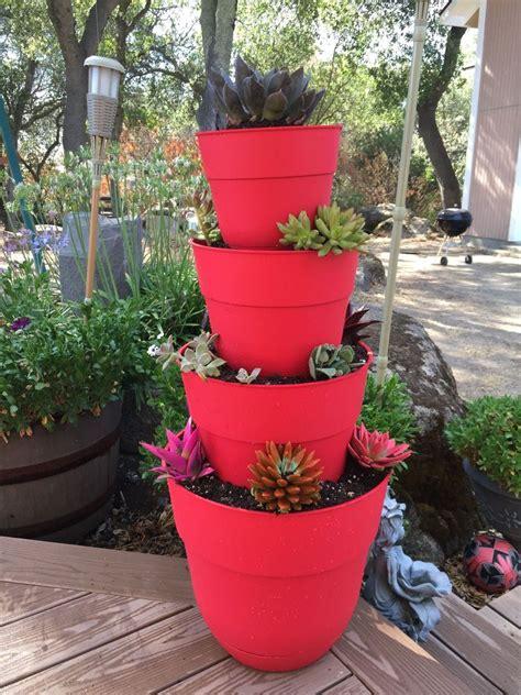 garden in pots beginners 20 low maintenance container gardens for beginners hometalk