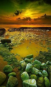 Grab Hold Of the Suprising Nature Screensavers - Marvelous ...