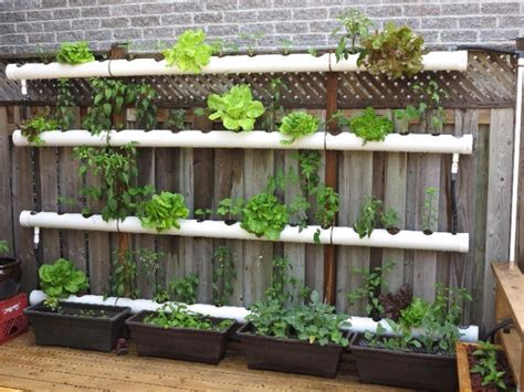 Vertical Garden Pipe by Growing A Vertical Garden And Ideas To Get You Started