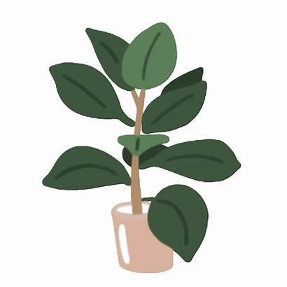 Pot Sticker Plants Stickers Giphy Tweet