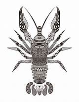 Coloring Lobster Cancer Zodiac Kidspressmagazine Quotes Sign Pages Astrology Adults Doodles Crayfish Least sketch template