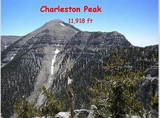 Charleston Peak Via North Loop to South Loop Meetup