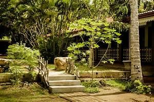 zertifiziertes ayurveda und erlebnis resort in sri lanka With katzennetz balkon mit ayurveda garden sri lanka