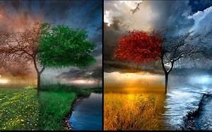 Wallpaper Free: Four Seasons wallpaper