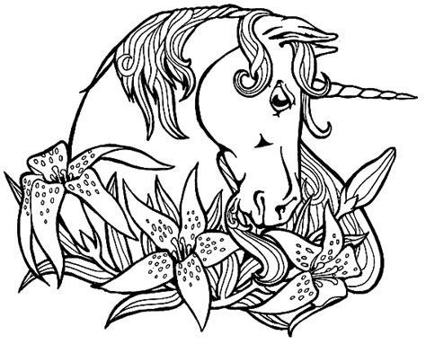 Kleurplaat Zeemeermin Eenhoorn by Afbeeldingen Bij Kleuren Kleurplaten Of Boekjes Is Ook