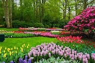 Beautiful Spring Desktop