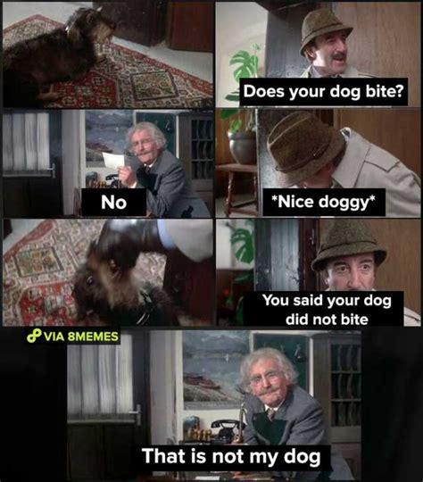 Dog Bite Meme - does your dog bite that s not my doggy memes dopl3r com