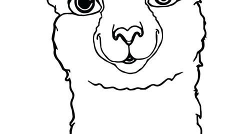 collection  llama clipart    llama