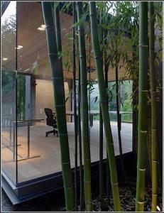 Balkon Sichtschutz Kunststoff Meterware : balkon sichtschutz bambus meterware heimdesign ~ Bigdaddyawards.com Haus und Dekorationen