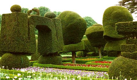 Levens Hall  Topiary In The United Kingdom