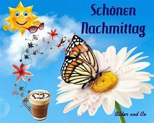 Schönen Freien Tag Bilder : sch nen nachmittag nachmittag bild 25321 ~ Eleganceandgraceweddings.com Haus und Dekorationen