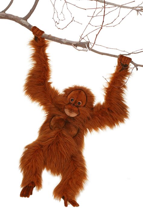 clyde orangutan stuffed animal