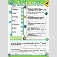The Environment  Vocabulary Practice Worksheet  Free Esl Printable Worksheets Made By Teachers