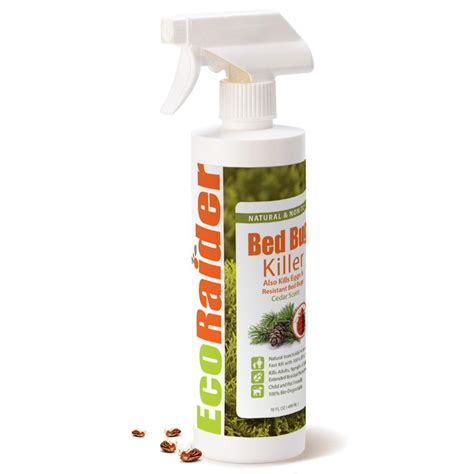 Best Bed Bug Spray Home Depot by Ecoraider 16 Oz And Non Toxic Bed Bug