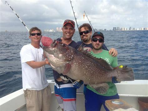 grouper fishing warsaw lauderdale monster ft caught fort fishheadquarters action sportfishing let go charter
