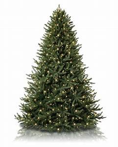 Oh Christmas Tree Artificial Tree Treetopia