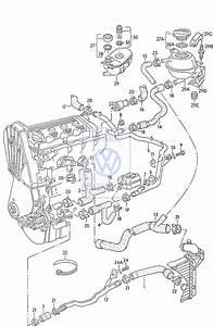 Volkswagen Passat Cooling Parts Catalog