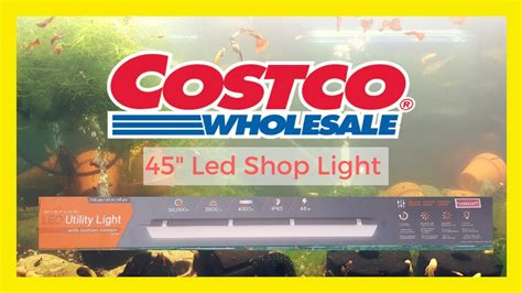 costco led shop light costco led shop light review aquariumcoop unboxing 5904
