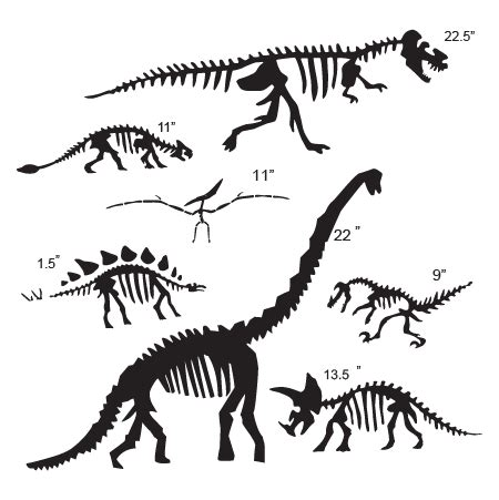 dinosaur themed room dinosaur fossil collection wall quotes wall decal